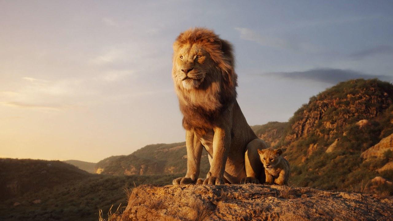 rey-leon-header-mitv