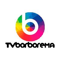 TV Borborema